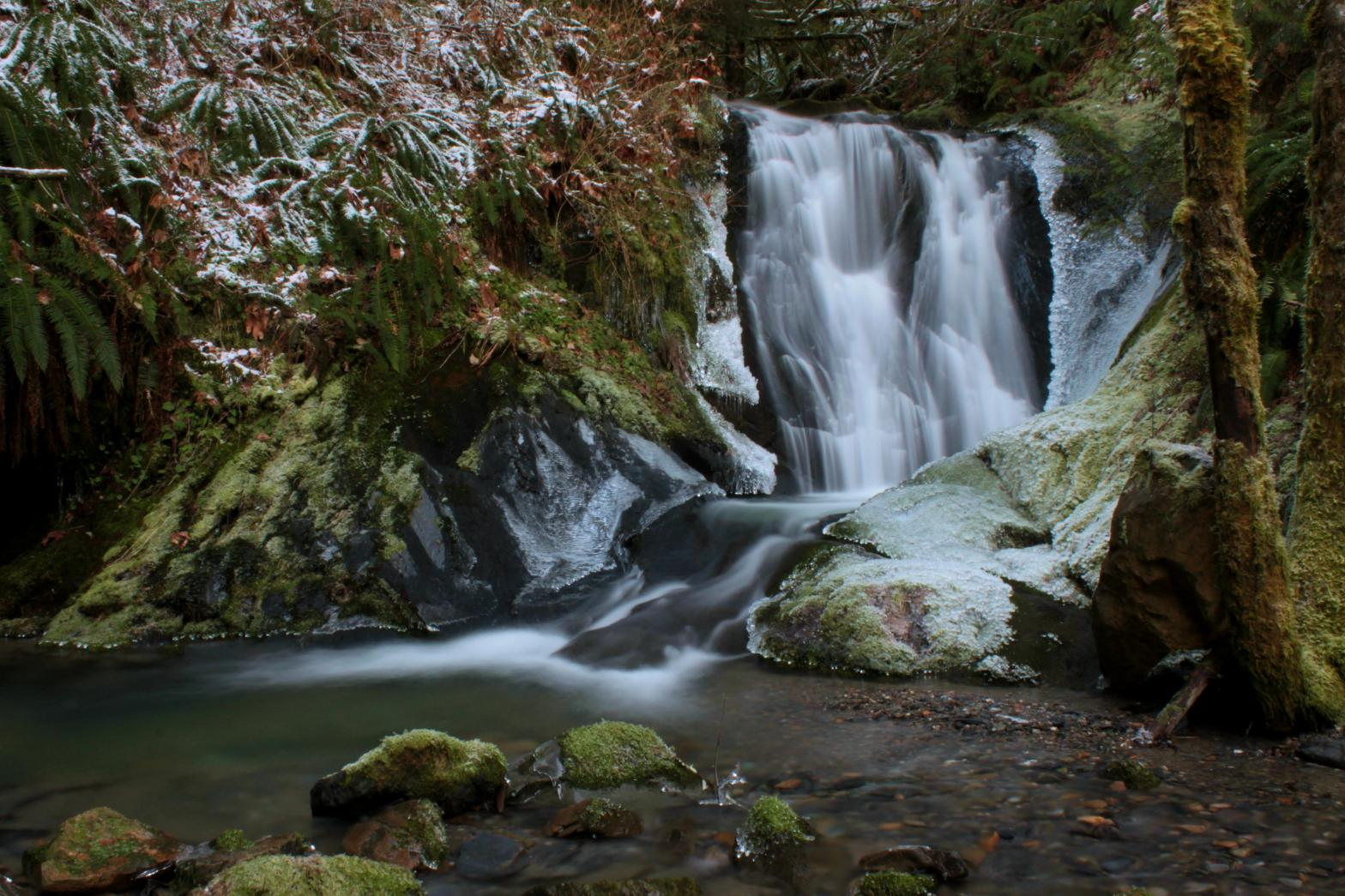 Winter at Big Fir Falls