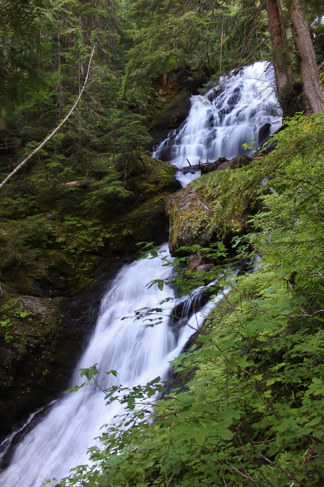 Middle Section of Gold Run Falls